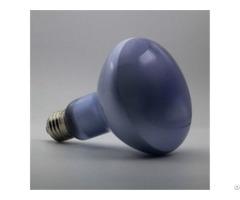 Reptile Daylight Neodymium Basking Lamp R30 R95 150w