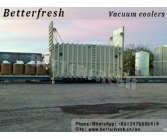 Vegetable Vacuum Cooler