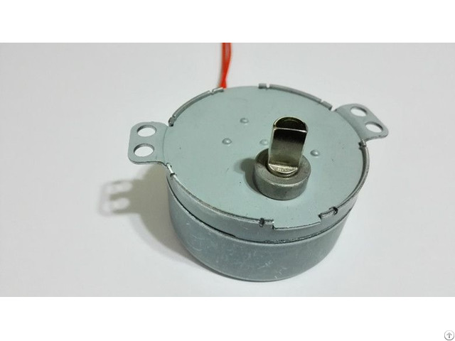 4w 50 60hz Motors For Electric Incubators Synchronous Motor 49tyd