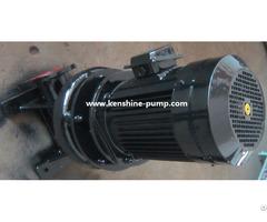 Lw Wl Vertical Sewage Pump