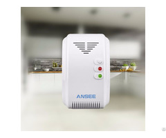 Bwr 01a Fuel Gas Detector