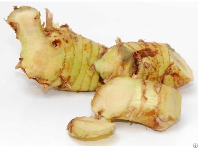 Dried Galangal