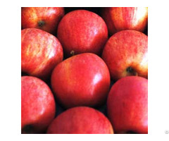 Apples Royal Gala And Granny Smith