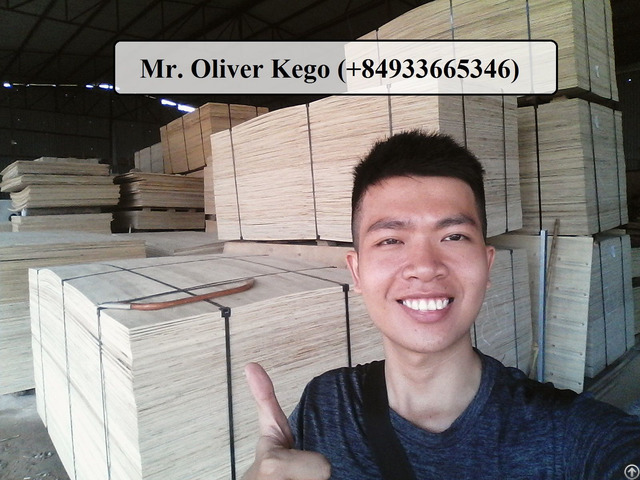 Vietnamese Packing Plywood Shipping To Asia