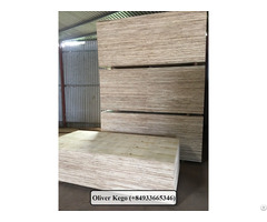 Vietnamese Packing Plywood Shipping To Malaysia