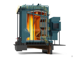 Dhl Series Biomass Fired Steam Boiler