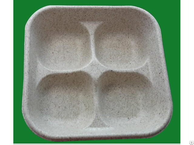 High Quality Biodegradable Custom Disposable Four Food Tray Paper Plates