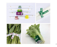 Water Proof Paper Vegetable Tag Twist Tie