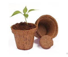 Coconut Fiber Pots