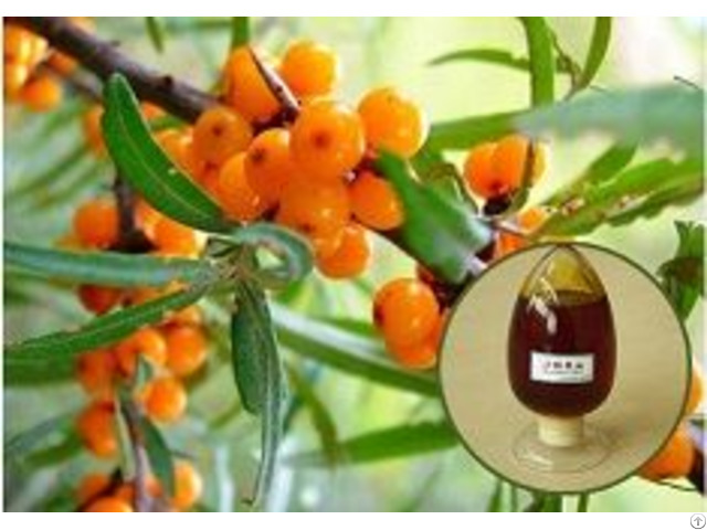 Top Quality Pumpkin Seed Oil For Food Grade Healthy