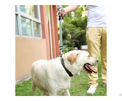 Nylon Adjustable Traction Lead Rope And Collar Set