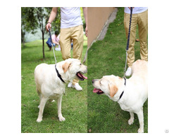 Prevent Bite Pet Dog Rope And Collar Sets