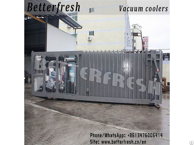 Leafy Pallets Vacuum Cooler
