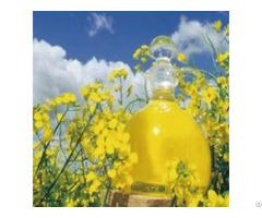 Premium Oils Fermented Rapeseed Oil