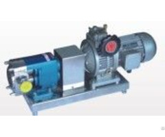Zb3a Series Rotor Pumps