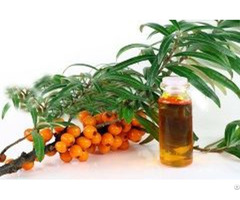 Gmp Approved Natural And Pure Seabuckthorn Seed Oil