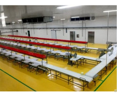 China Automatic High Quality Safety New Type Food Bag Packing Belt Conveyer Line