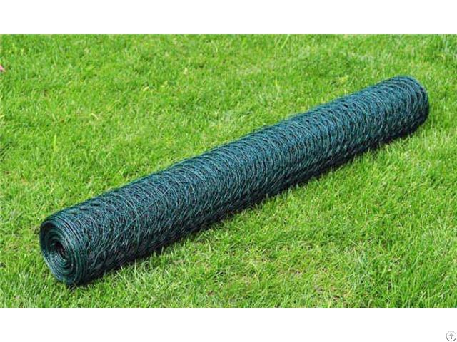 Pvc Coated Green Color Hexagonal Chicken Wire Net