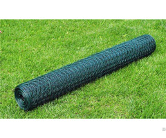 Pvc Coated Green Color Hexagonal Chicken Wire Net