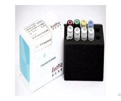 Eudxtm Mtb Detection Kit