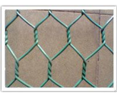 Exported Africa Hexagonal Wire Net