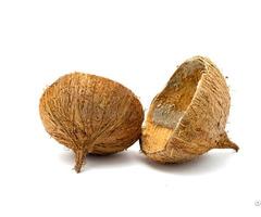 Coconut Shells Viet Nam