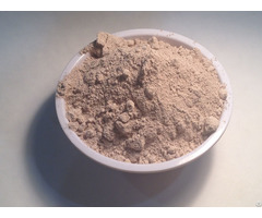 100% Certified Organic Garcinia Powder