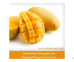 Frozen Mango Slice From Thailand