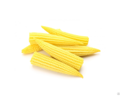 Iqf Frozen Baby Corn Whole L Slice