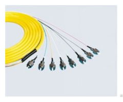 Bundle Patchcord