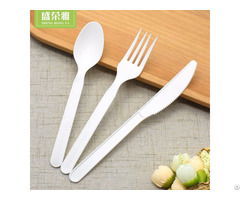Disposable Cpla Cutlery Set
