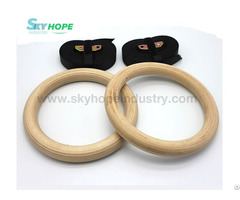 High Quality Gym Ring