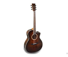 Om Acoustic Guitar Solid Top Type