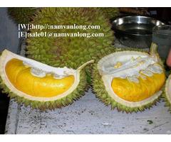 Durian From Viet Nam