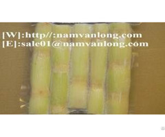 Frozen Sugarcane From Viet Nam