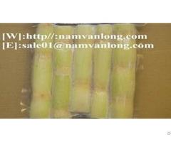 Frozen Sugarcane From Viet Nam
