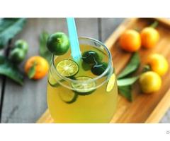 Fresh Dried Kumquat Cheap Price And High Quality