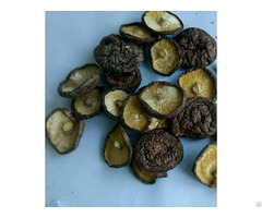 Dried Mushrooms From China
