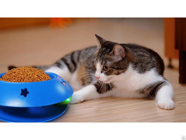 Rolling Ball Cat Bowl