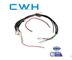 Remote Control Wire Harness Pin Connector For Vehicle
