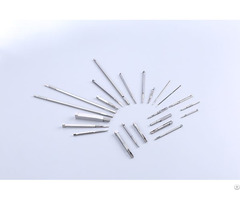 Core Pin Manufacturer Micro High Precision Inserts With Grinding And Emd Processing