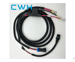 Professional Oem Custom Wire Harness Fuse Holder Automotive R Insulation Terminal Cable Assembly
