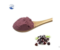 New Product Fresh Acai Berry Powder