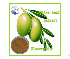 Herbal Product Oleuropein Hydroxytyrosol 20% From Olive Leaf