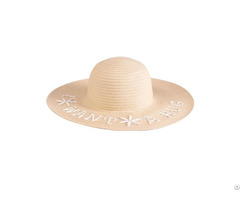 Embroidered Paper Braid Floppy Hat