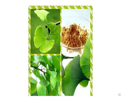 Catalogue Of Plant Extract