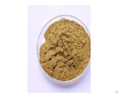 Green Tea Extract Catalogue Of Plant Extractt