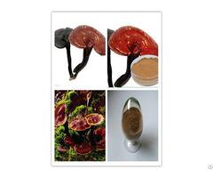 Ganoderma Lucidum Extract