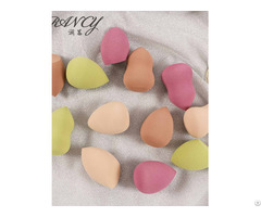 Beauty Face Blender Sponge