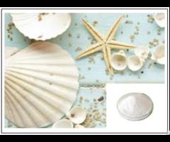Seashells Powder